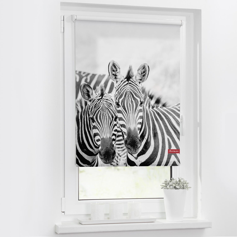 home24 Rollo Zebra
