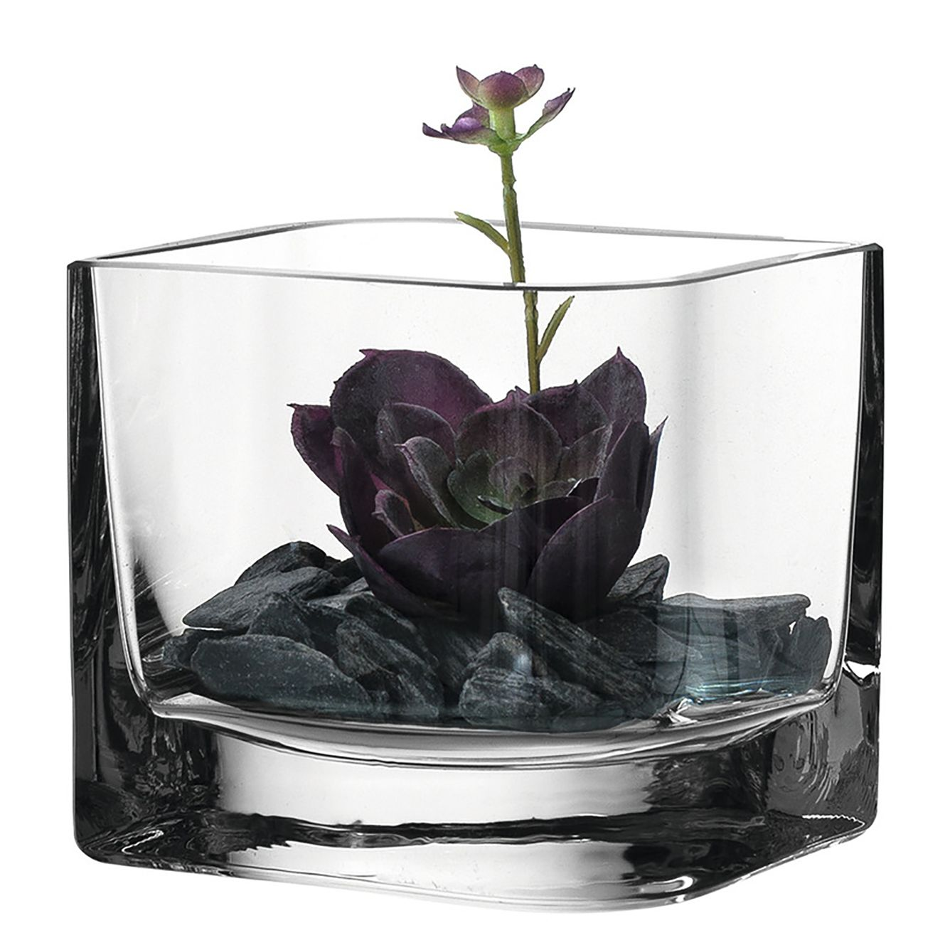 home24 Kunstpflanze Sukkulente Lucca I   Dekoration > Dekopflanzen > Kunstpflanzen   Weiss   Glas   Leonardo