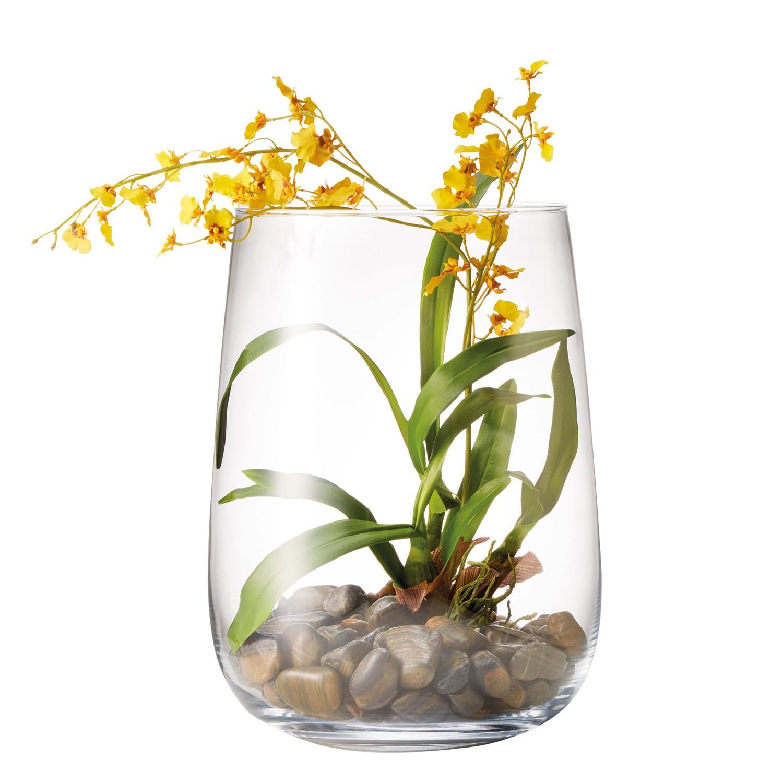 home24 Kunstpflanze Orchidee Terra   Dekoration > Dekopflanzen > Kunstpflanzen   Weiss   Glas   Leonardo