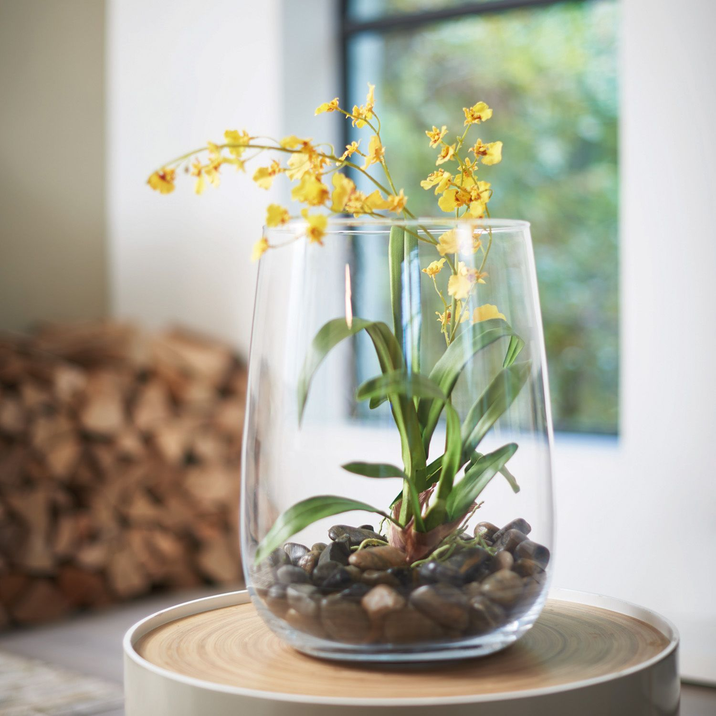Kunstpflanze Orchidee Terra, Leonardo