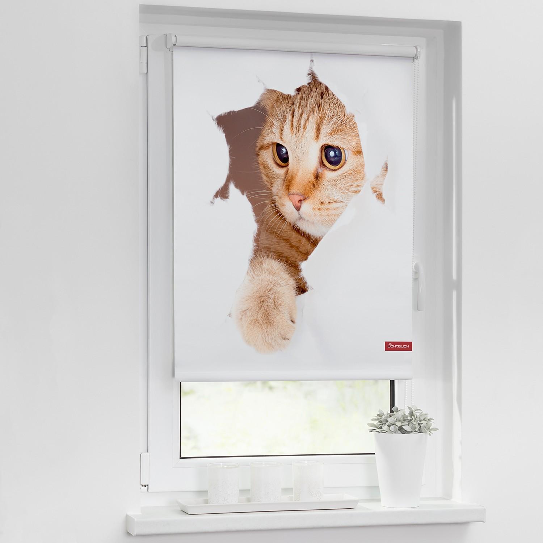 home24 Verdunkelungsrollo Katze