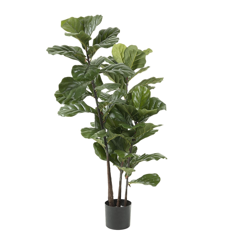 home24 Kunstpflanze Feigenbaum (2-teilig)   Dekoration > Dekopflanzen > Kunstpflanzen   Gruen   Kunststoff   home24
