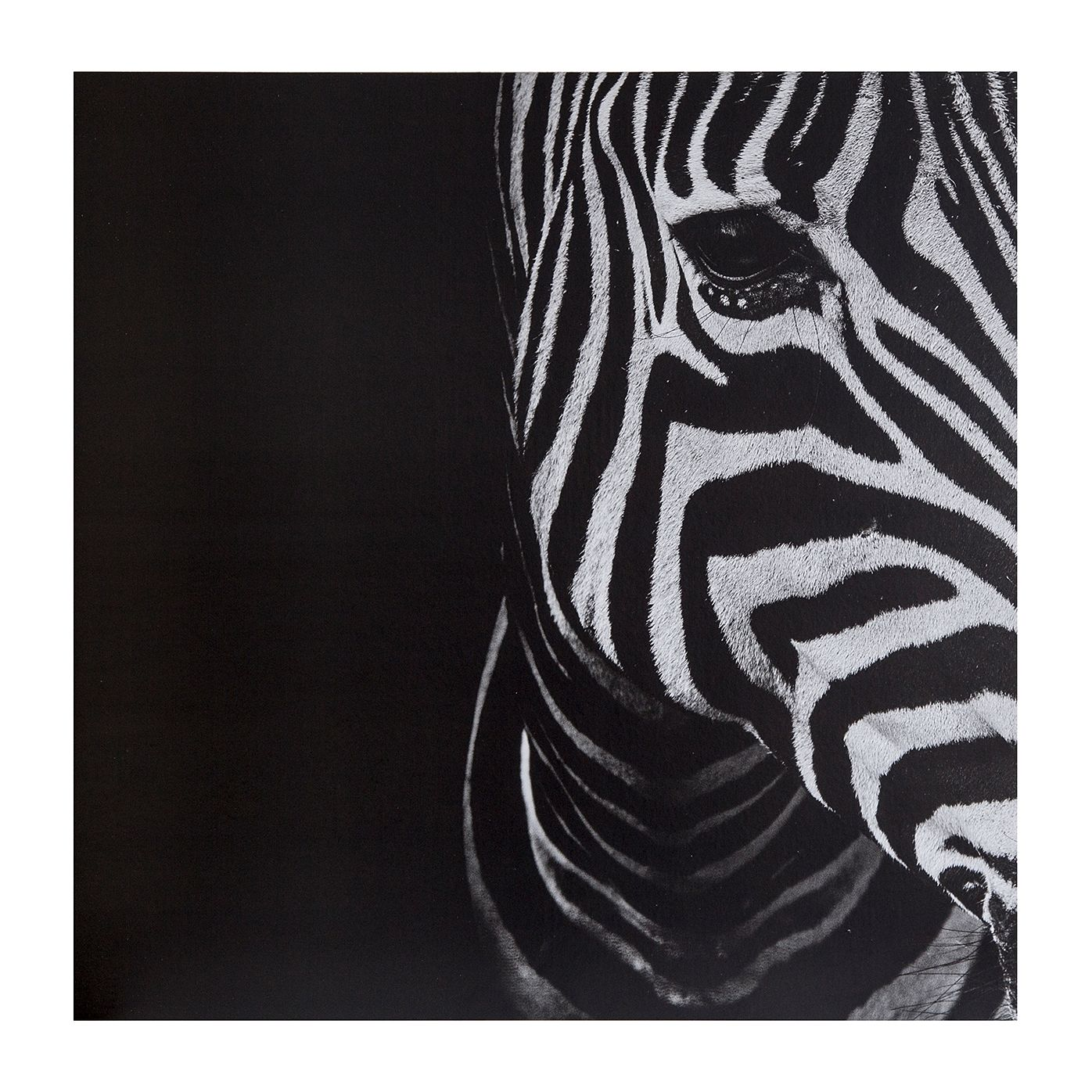 Deko-Panel Adora Zebra kaufen   home24