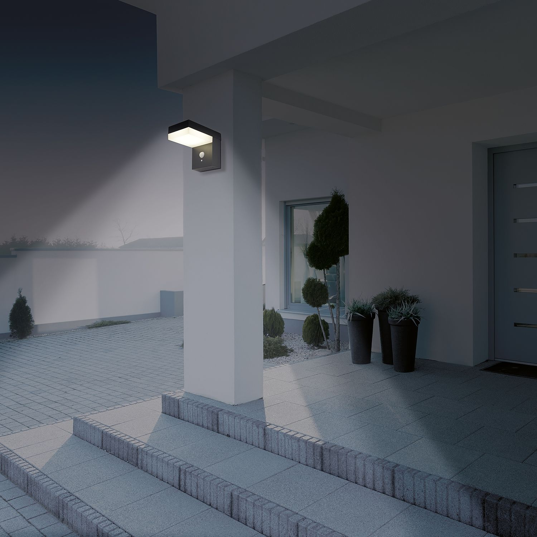 LED-Außenwandleuchte Filius, Näve