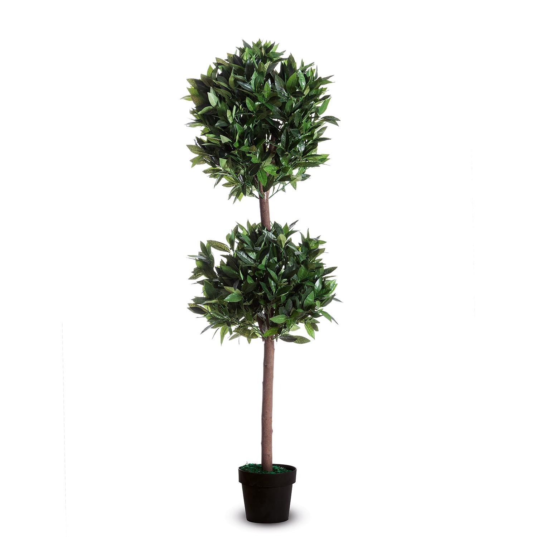 home24 Kunstpflanze Lorbeerbaum II   Dekoration > Dekopflanzen > Kunstpflanzen   Paperflow