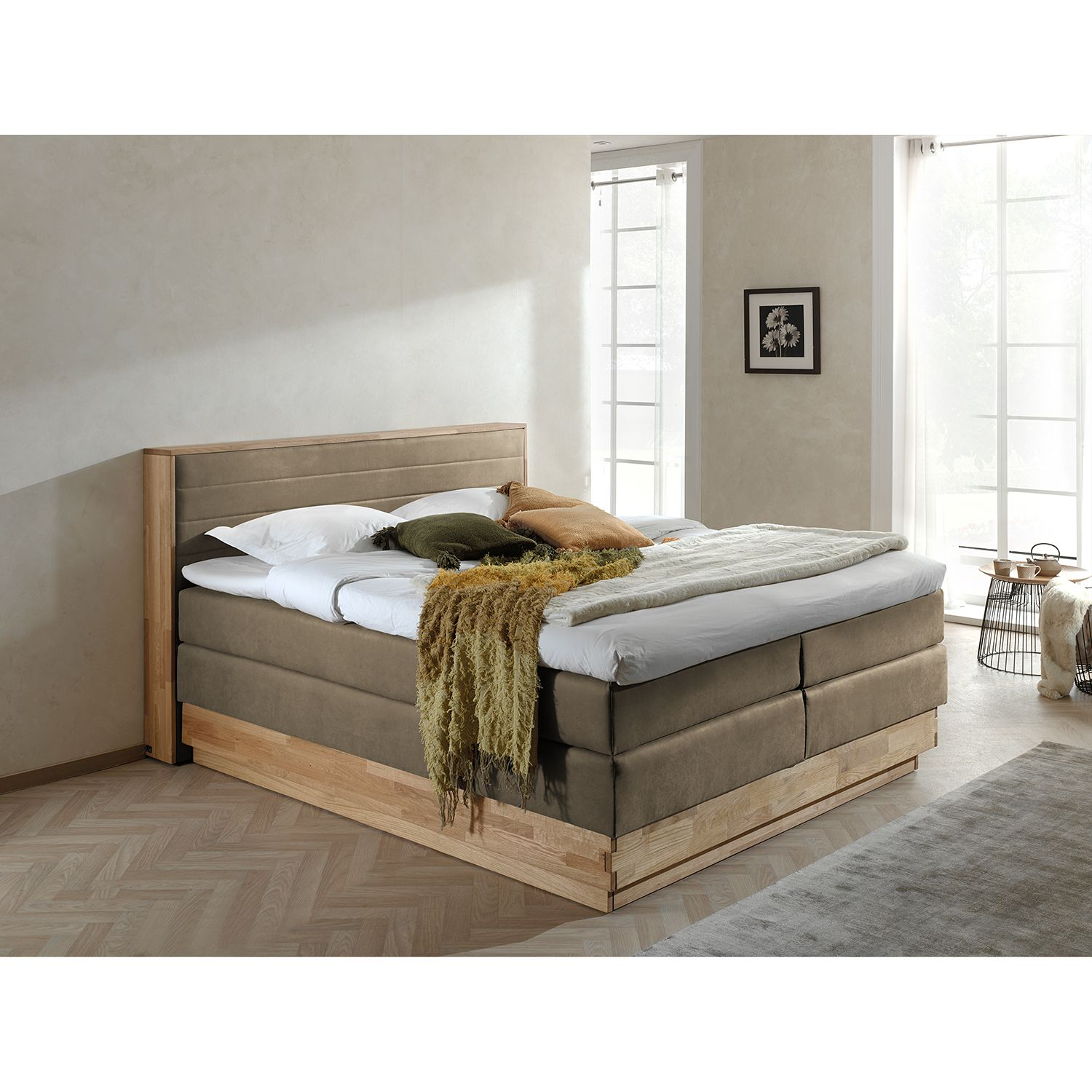 Boxspringbett Moneta