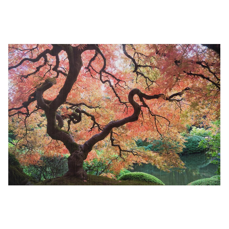 Bild Japanischer Garten III, Bilderwelten