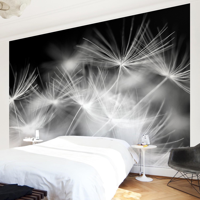 home24 Vliestapete Pusteblumen | Baumarkt > Malern und Tapezieren | Bilderwelten