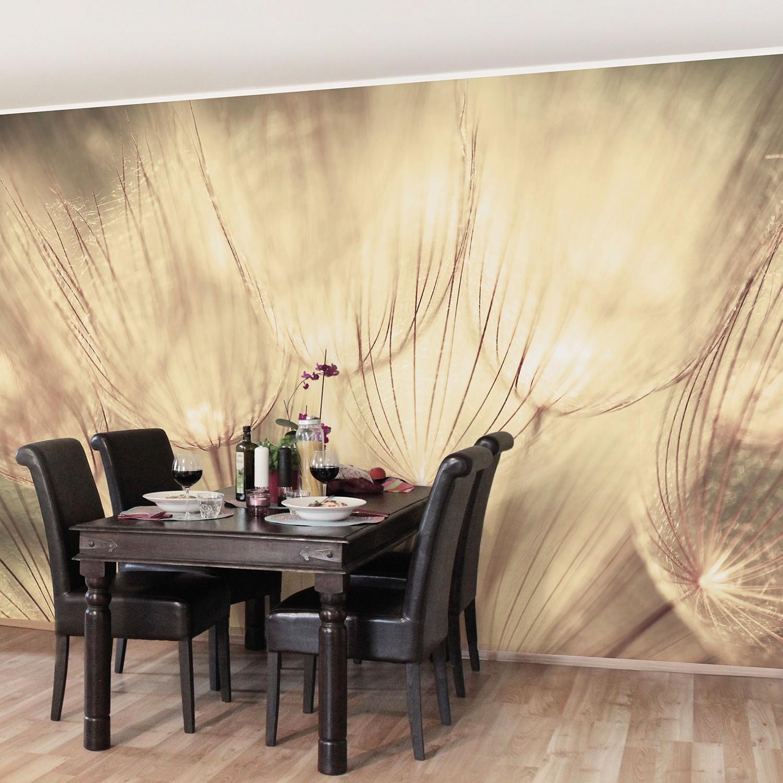 home24 Vliestapete Pusteblumen Sepia | Baumarkt > Malern und Tapezieren | Bilderwelten