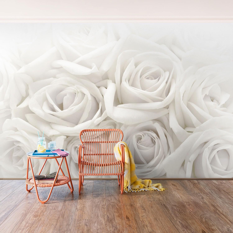 Vliestapete Weiße Rosen, Bilderwelten
