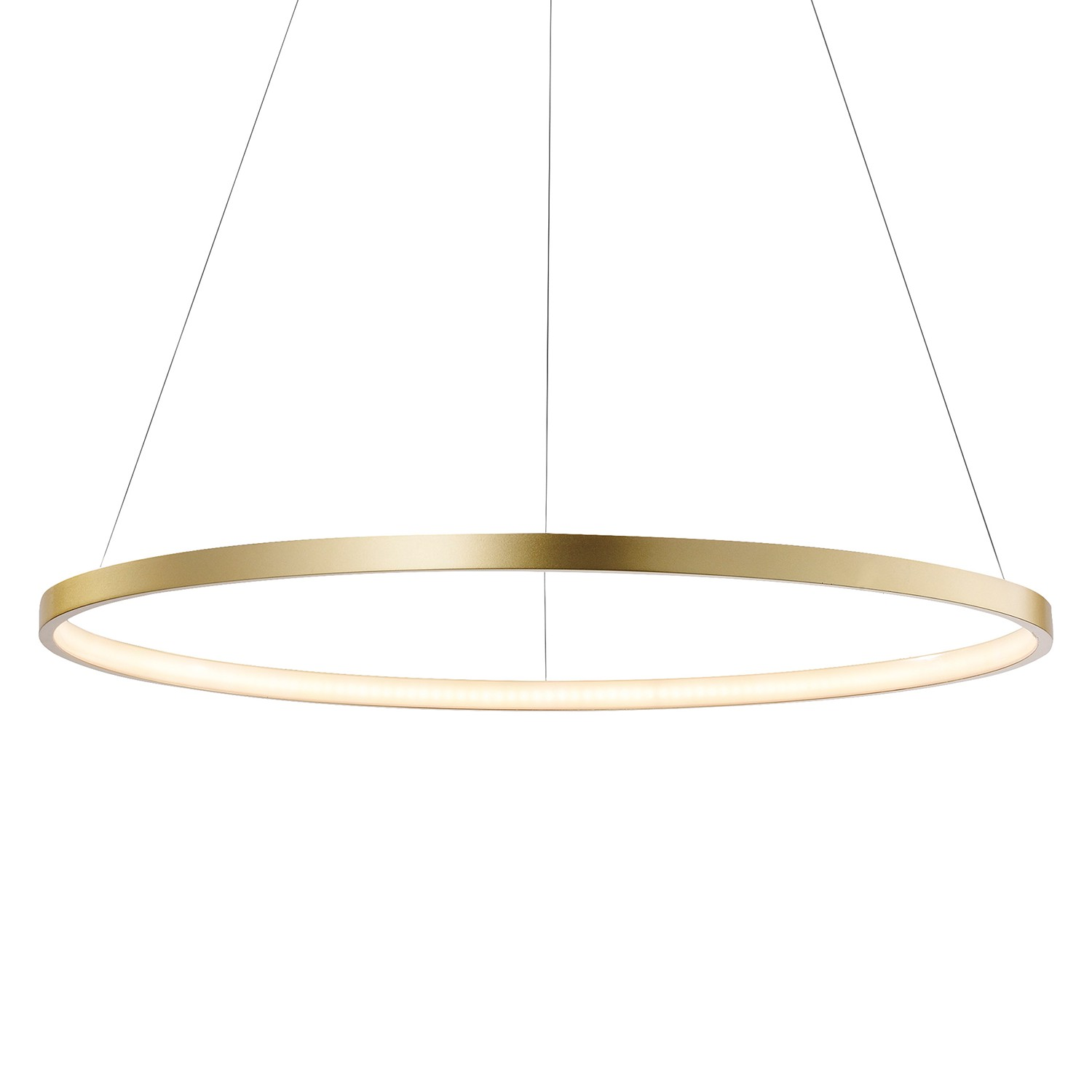 LED-Pendelleuchte Circle I, home24