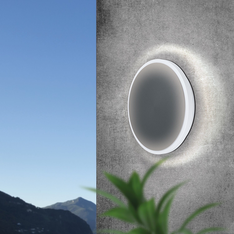home24 LED-Deckenleuchte Mongodio
