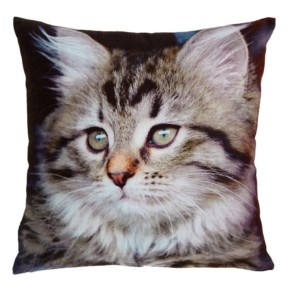 home24 Dekokissen Kitten