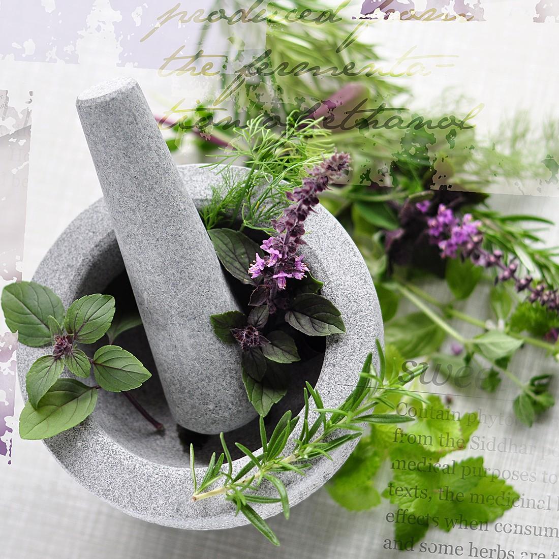 Glasbild Herbs Mood II | home24