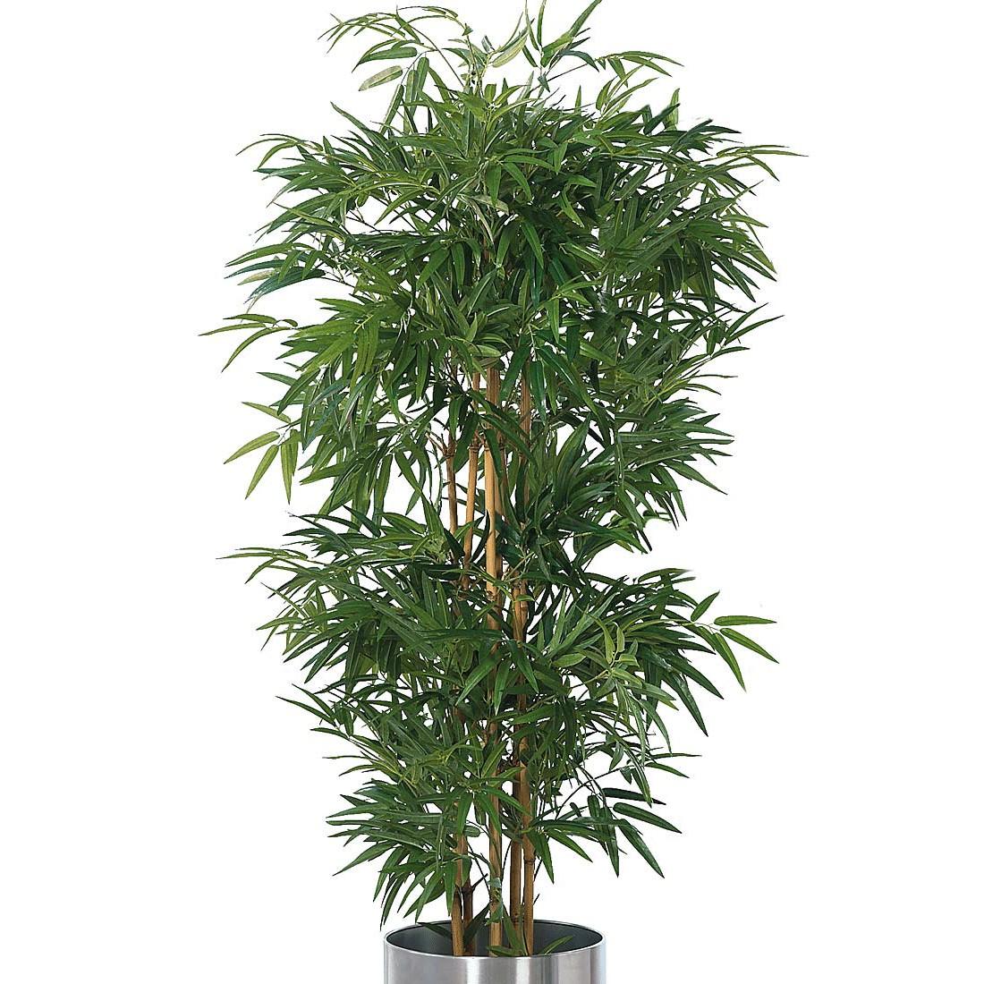 home24 Kunstpflanze Bambusbaum   Dekoration > Dekopflanzen > Kunstpflanzen   Textil   twentyfour
