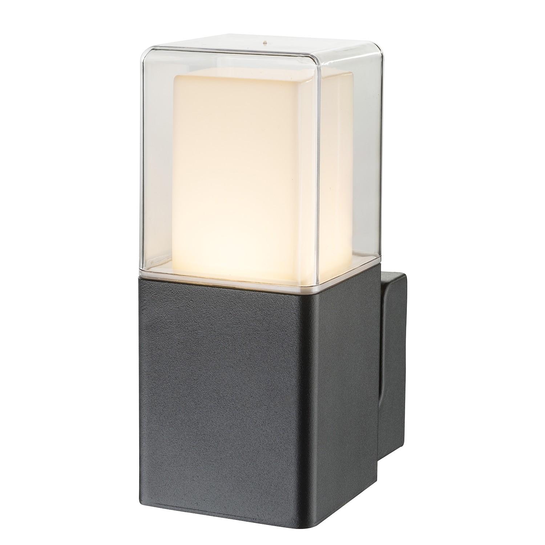 Luminaire d'extérieur LED Dalia II