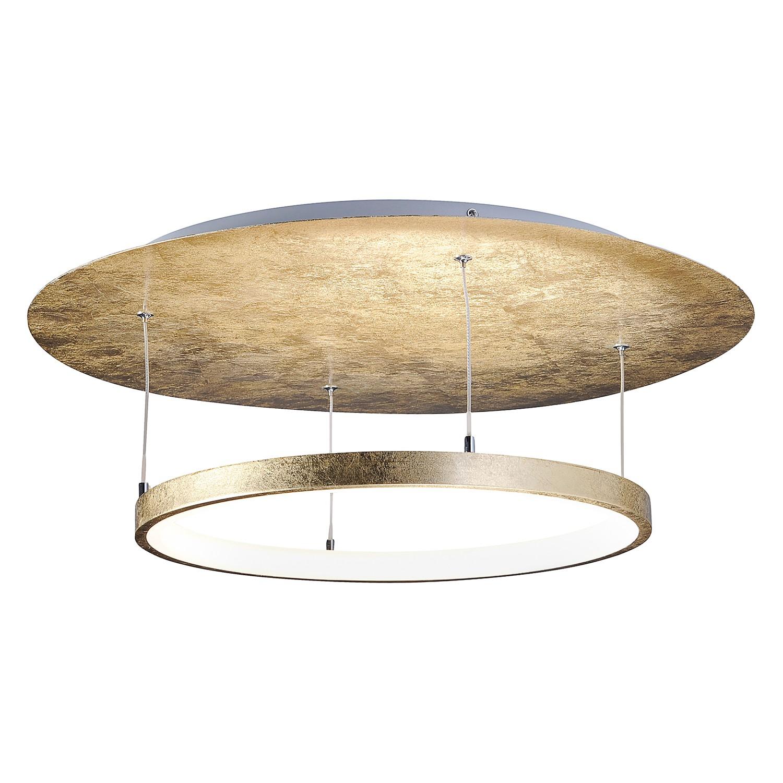 Led-plafondlamp Nevis Leaf Ii