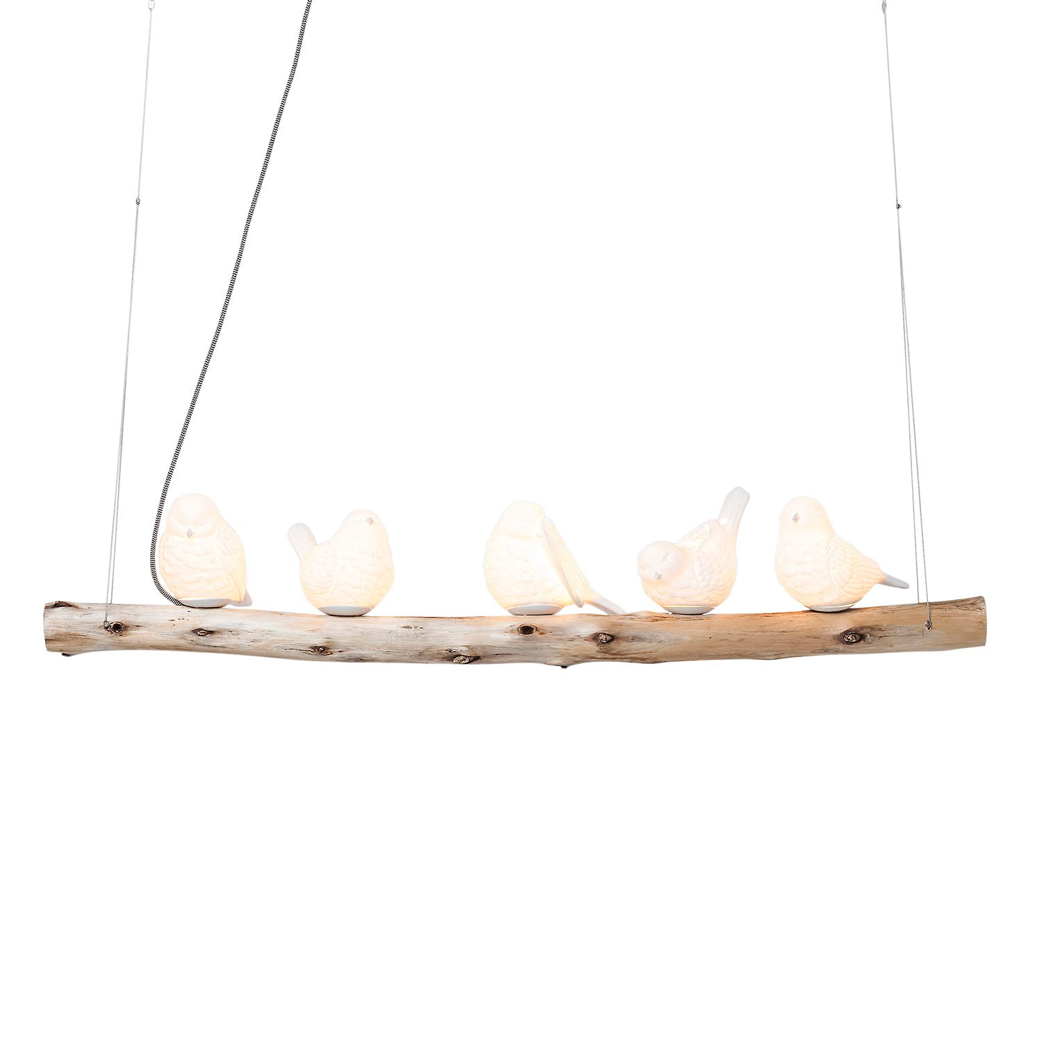 Suspension Dining Birds
