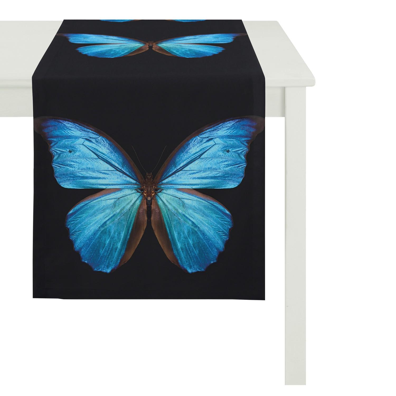 Tafelloper Vlinder, Apelt